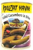 Kvuzat Yavne Pickled Cucumbers In Brine 18-25 Mini 19 oz
