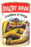 Kvuzat Yavne Cucumbers In Vinegar 18-25 Mini 19 oz